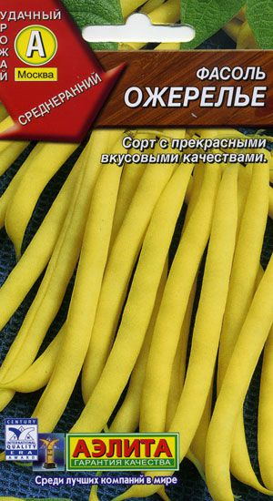 Фасоль модница выращивание 1053