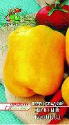 фото Желтый <a target=_top  href=/poisk/колокол><big>колокол</big></a> перцы