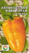 фото Абрикосовая фаворитка перцы