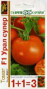 фото Урал Супер F1 помидоры и томаты