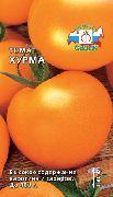 фото Хурма <a target=_top  href=/search/помидоры><big>помидоры</big></a> и томаты