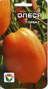 фото Олеся помидоры и томаты