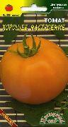 фото Хорошее настроение <a target=_top  href=/search/помидоры><big>помидоры</big></a> и томаты