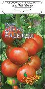 фото Озеро надежды F1 помидоры и томаты