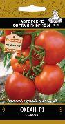 фото Океан F1 помидоры и томаты