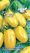 фото Самоцвет золотой помидоры и томаты