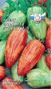 фото Самоцвет лучистый F1 помидоры и томаты