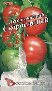 фото Ленинградский скороспелый помидоры и томаты