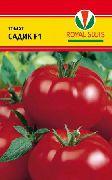 фото Садик F1  помидоры и томаты