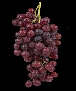 фото Олимпийский виноград